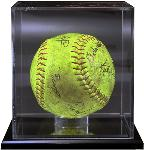 Softball Case
